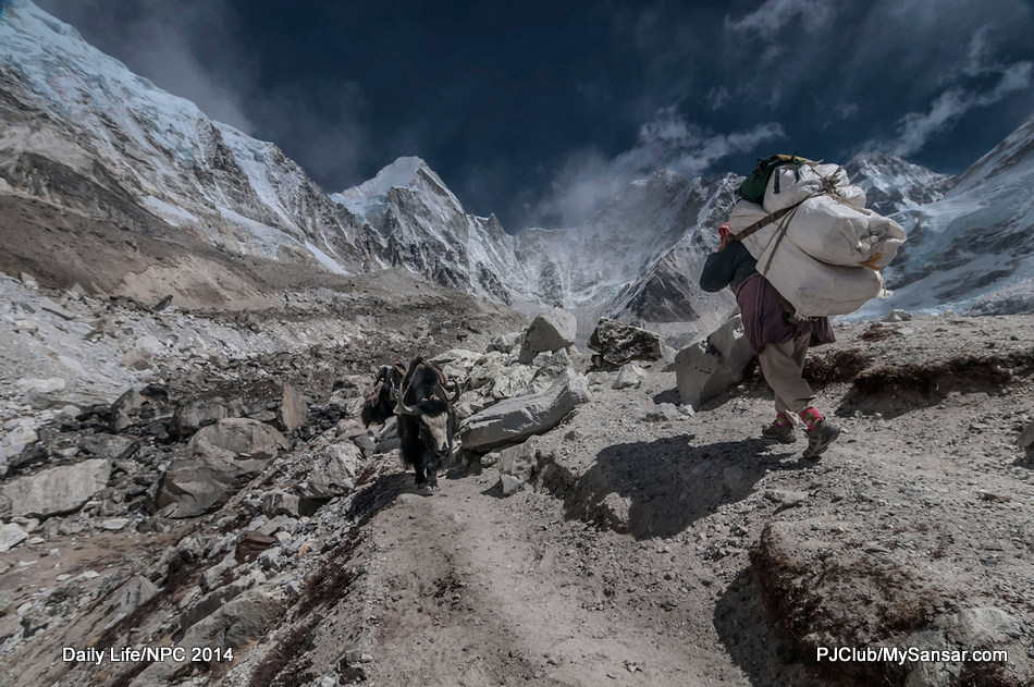 A porter carries a massive load on his back as he makes his way to the Everest Base Camp.  Photo: Birendra Raj Bajracharya