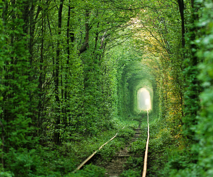 tunnel_of_love