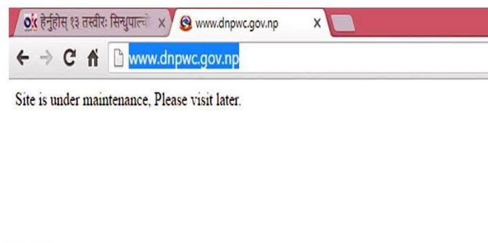 dnpwc
