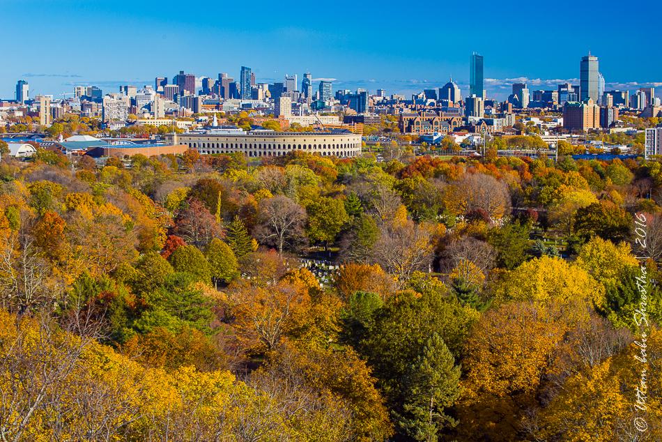 fall-colours-uttambabu-6